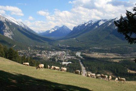 Mount Norquay, View of Banff