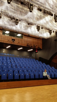 300 seat Performance Hall, National Music Centre, Calgary